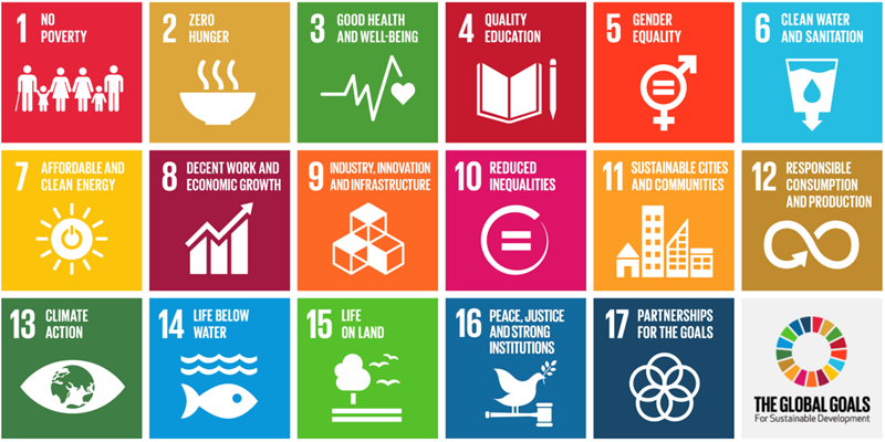 Sustainability: a global investment opportunity
