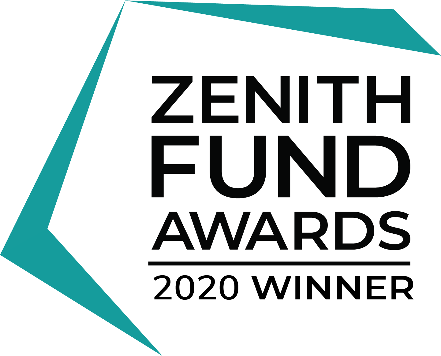 Zenith fund awards 2020 winner