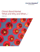 china bond market what and why and when cover image