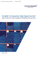 Small Companies Big Oppertunities